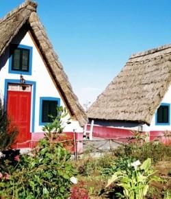 Остров Мадейра: Лес, ставший садом