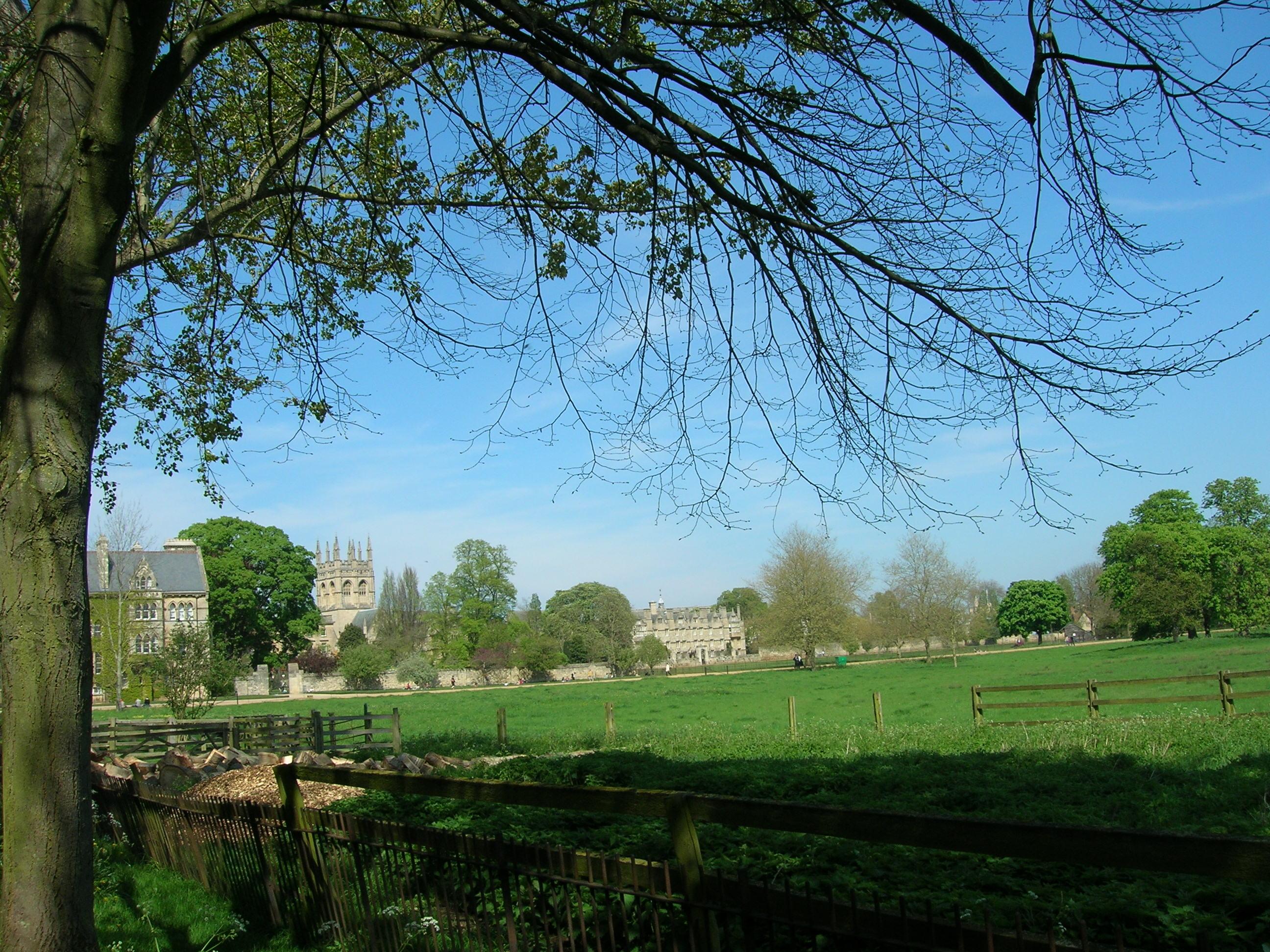 Луга в окрестностях Оксфордского университета, где проводили время сестры Лиделл