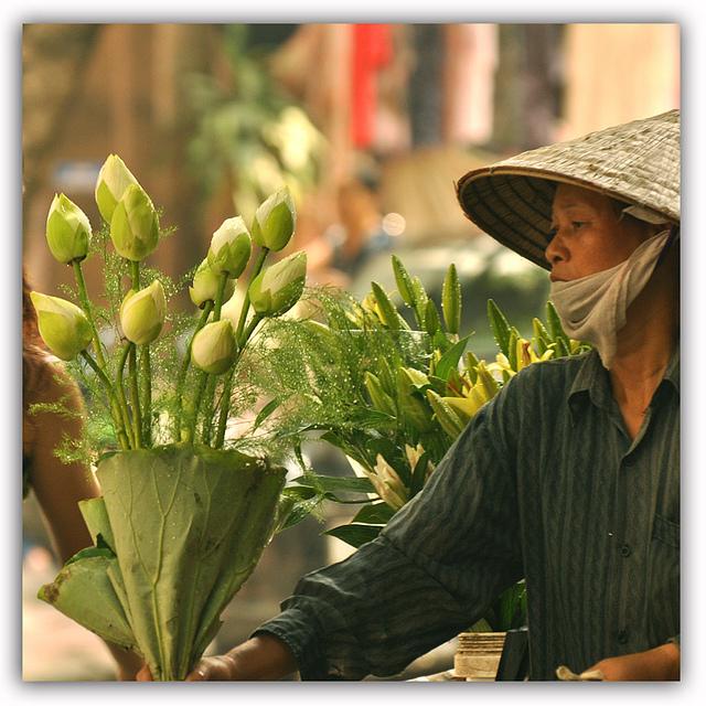 Вьетнам: Ханой – назад в будущее