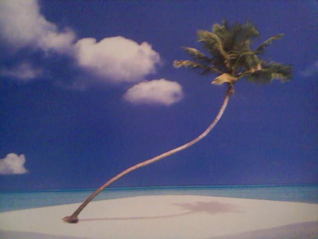 Лучшие тропические острова