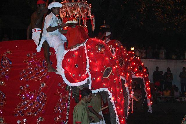Kandy Perahera Festival