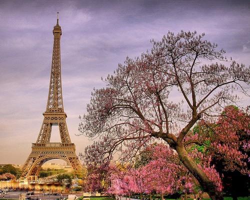Отели в Париже со скидками