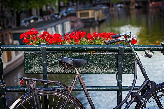 Особенности путешествия в Амстердам
