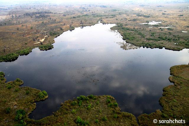 Ботсвана_Окаванго панорама