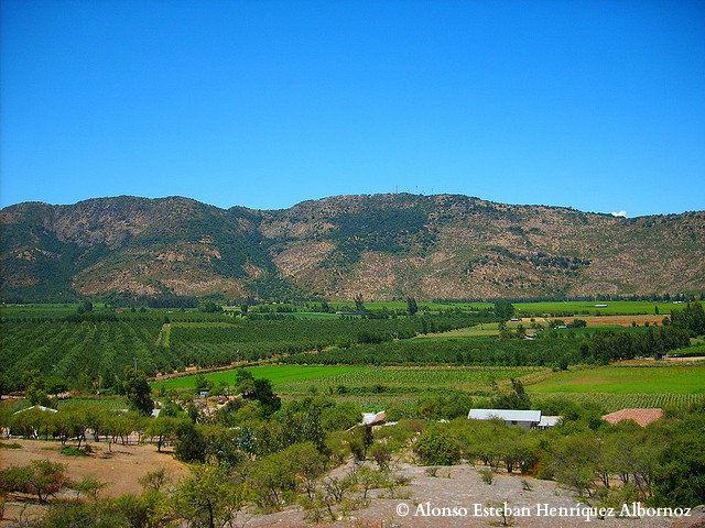 Colchagua Valleys