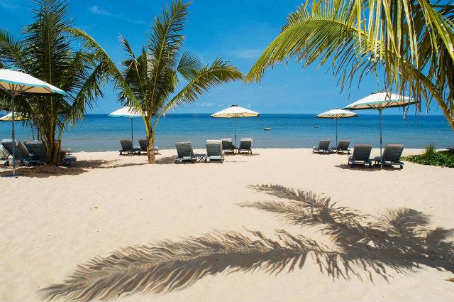 главная пляжные отели