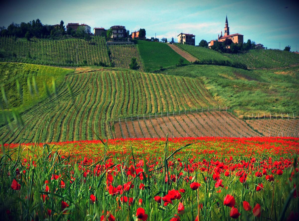 Италия: Лучшие идеи для отдыха от Болоньи до Равенны