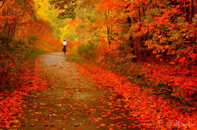куда поехать осенью