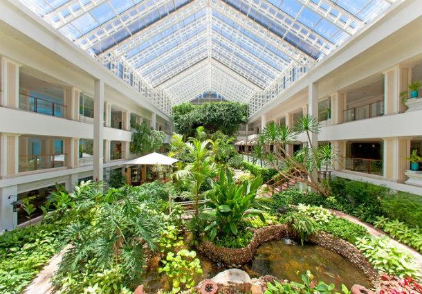Отель в Паттайе Dusit Thani