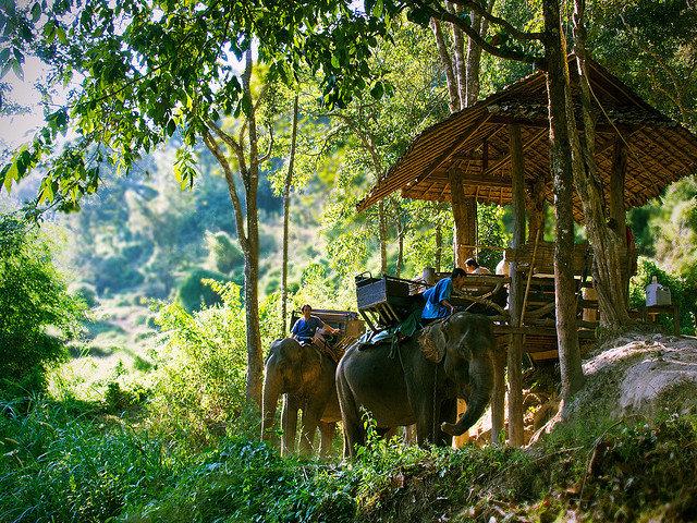 Путешествие в Чианг Май
